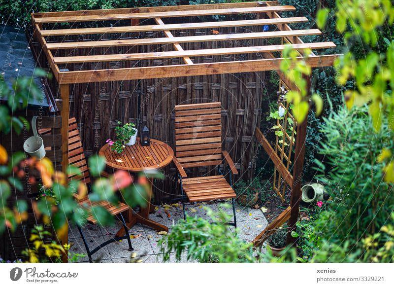 Blick auf Sitzplatz unter Pergola aus Holz im Garten sitzplatz Haus Stuhl Terrasse Tisch Sitzgelegenheit Sommer Gartenstuhl Herbst Regen Pflanze Sträucher