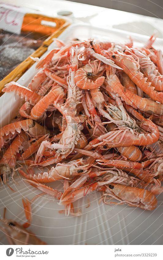 scampis Lebensmittel Meeresfrüchte Krustentier Garnelen kaufen Tier frisch Gesundheit lecker Markt Marktstand Fischmarkt Protein Gesunde Ernährung Farbfoto