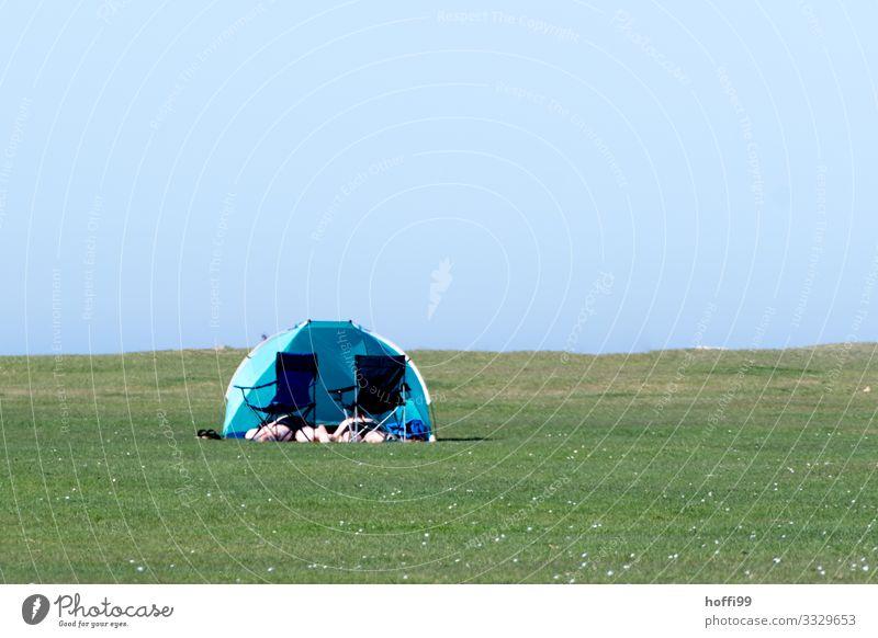 Sonnenbad auf grüner Wiese mit Klappstuhl und Windmuschel Strand Mensch 2 Landschaft Wolkenloser Himmel Sommer Schönes Wetter Gras Rasen Seeufer Nordsee Zelt