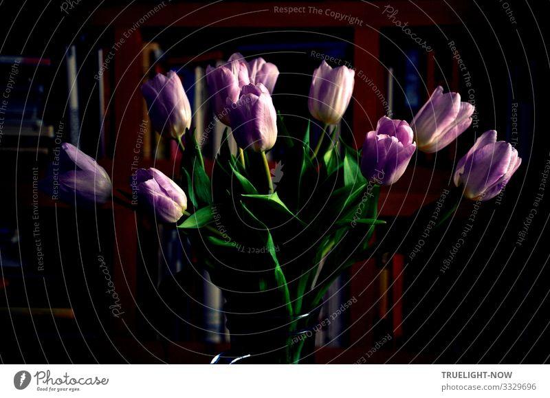 Lasst Blumen sprechen! Lifestyle elegant Stil Freude Glück Wellness harmonisch Wohlgefühl Sinnesorgane Erholung ruhig Meditation Häusliches Leben Wohnung