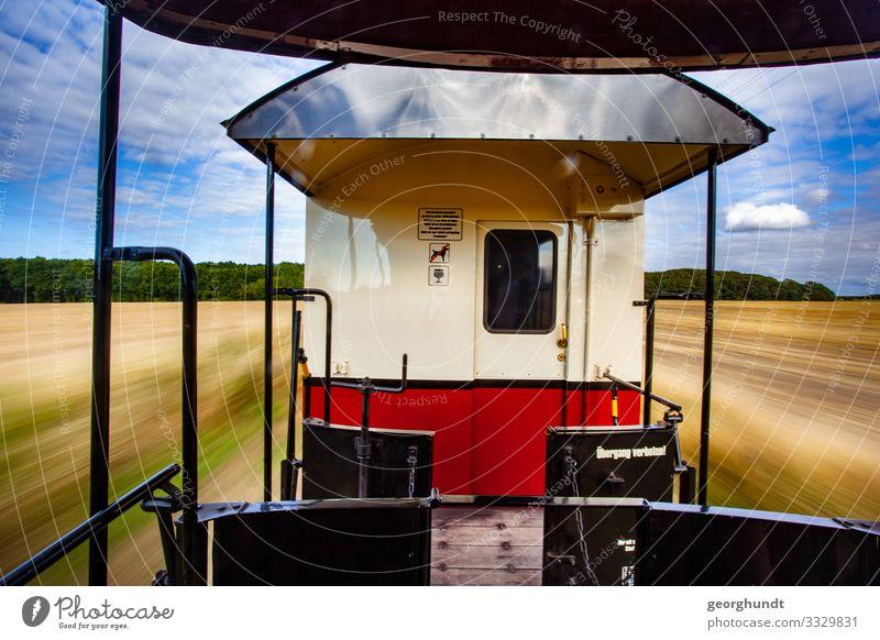 Ein Wackeldackel namens Molli Ferien & Urlaub & Reisen Tourismus Ausflug Abenteuer Sommer Sommerurlaub Natur Landschaft Himmel Feld Verkehr Verkehrsmittel