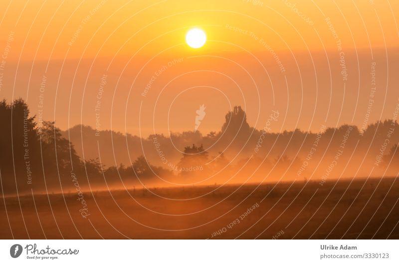 Nebel Impressionen Wellness harmonisch Wohlgefühl Zufriedenheit Erholung ruhig Meditation Spa Tapete Trauerkarte Trauerfeier Beerdigung Umwelt Natur Landschaft