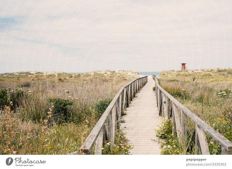 weg zum Strand Himmel Ferien & Urlaub & Reisen Natur Sommer Pflanze Wasser Landschaft Meer ruhig Ferne Umwelt Küste Gras Tourismus Freiheit