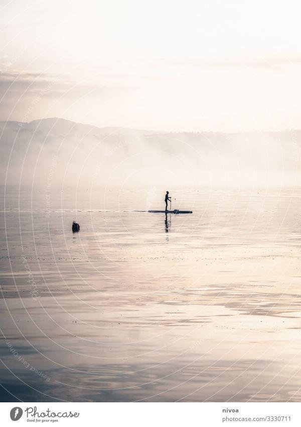 Aufstehen Paddeln Stand Up Paddelboarden aufstehen Zürich See Winter Außenaufnahme Wasser Tag Reflexion & Spiegelung Natur 1 Nebelstimmung schönes Wetter