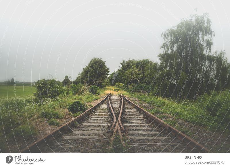Bahngleise enden im Nirgendwo Natur Landschaft Frühling Sommer schlechtes Wetter Nebel Pflanze Baum Sträucher Wiese Feld Verkehrswege Schienenverkehr Gleise