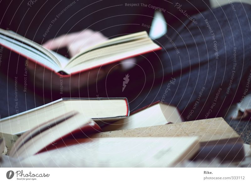 Literarisch versunken. Mensch Jugendliche Freude Erholung ruhig Erwachsene 18-30 Jahre Schule Freizeit & Hobby Buch lernen Studium lesen Kultur Bildung Student