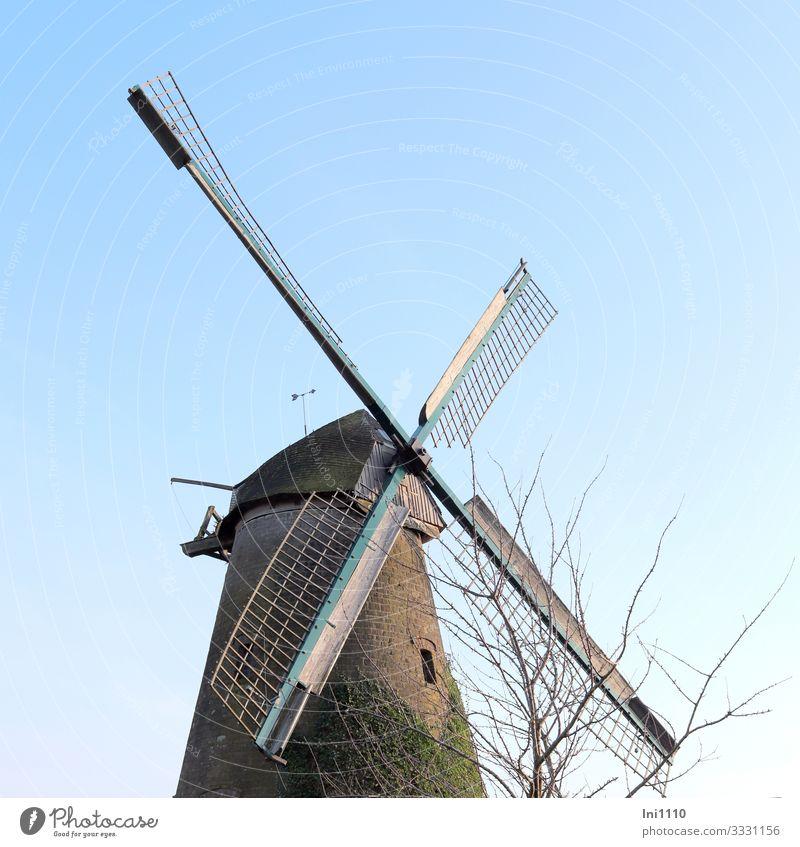 Kappenwindmühle mit Kirschbaum Windkraftanlage Winter Feld Bauwerk Mauer Wand Sehenswürdigkeit Denkmal Windmühle Kraft Windmühlenflügel Getreide zerkleinern