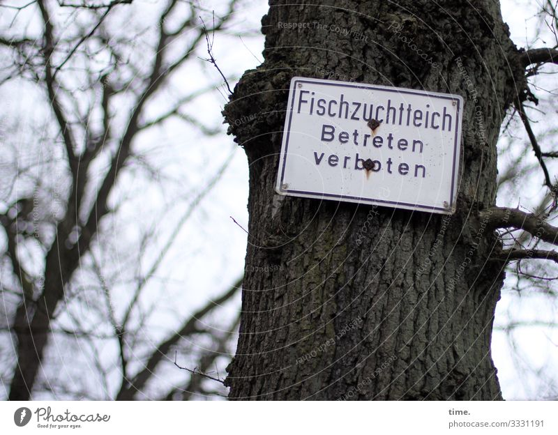 angeln und baden okay | Geschriebenes Natur Baum Wald dunkel Schriftzeichen Kommunizieren Schilder & Markierungen Kreativität verrückt Idee Hinweisschild