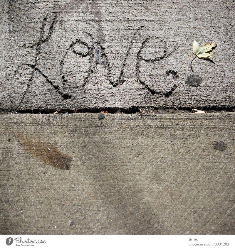 so ziemlich for ever | Geschriebenes Stadt Blatt Straße Leben Liebe Wege & Pfade Gefühle Zeit Kunst Stimmung Linie Kreativität Lebensfreude Romantik Beton