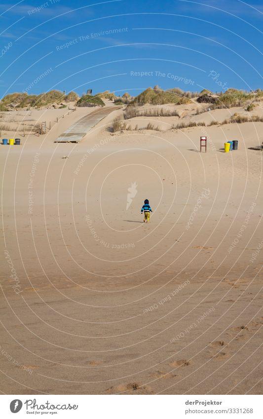 Einsam am Strand im Alentejo Ferien & Urlaub & Reisen Tourismus Ausflug Abenteuer Ferne Freiheit Sommerurlaub wandern Umwelt Wellen Küste Meer Beginn Angst
