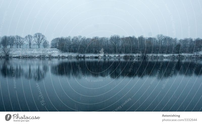 Traumwetter Umwelt Natur Landschaft Wasser Himmel Wolken Winter Wetter schlechtes Wetter Unwetter Wind Nebel Schnee Schneefall Baum Flussufer Donau Donauinsel