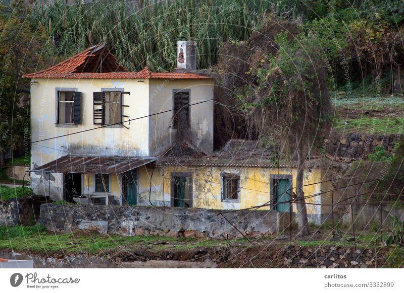 Der Zahn der Zeit Portugal Madeira Funchal Haus alt verfallen Renovieren Modernisierung vergangen Verfall Ruine Landhaus Villa Spekulationsobjekt Fassade