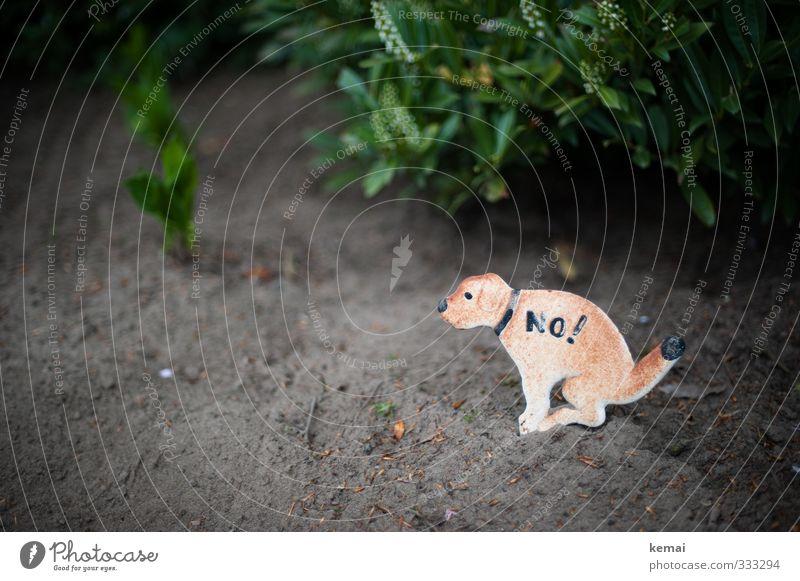 Helgiland | No! Natur Erde Grünpflanze Garten Zeichen Schilder & Markierungen Hinweisschild Warnschild Hund sitzen Verbote Sauberkeit defäkieren