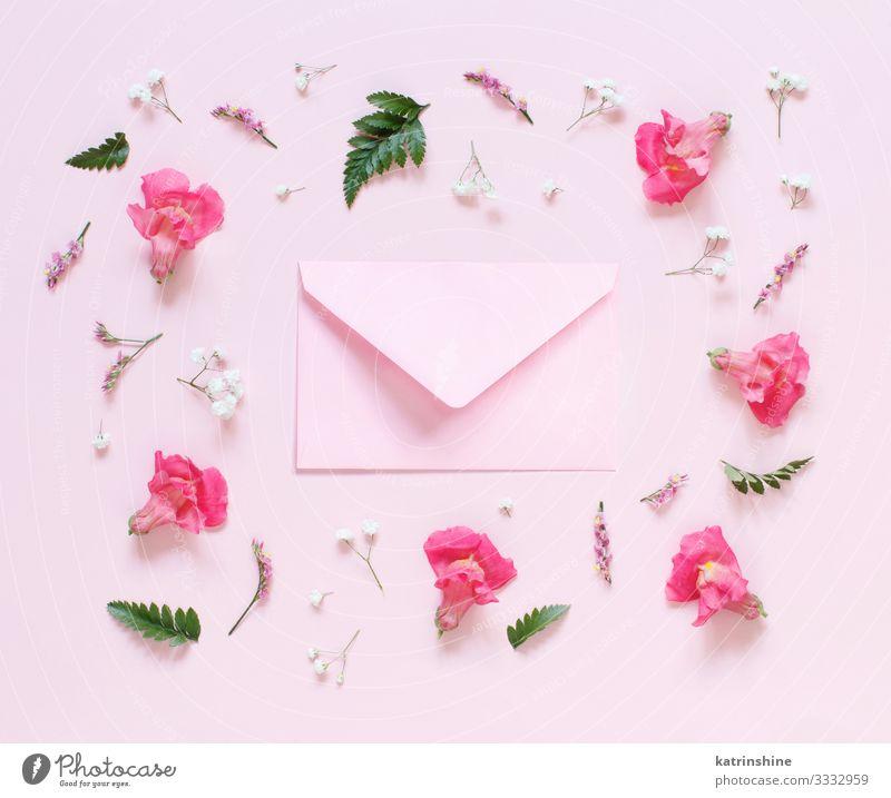 Blumen und rosafarbener Umschlag auf hellrosaem Hintergrund Design Dekoration & Verzierung Hochzeit Frau Erwachsene Mutter oben Kreativität Kuvert