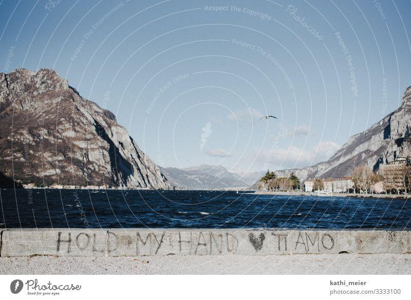 Ti Amo Italien Comer See Fischerdorf Hafen Mauer Wand Zeichen Schriftzeichen Herz fliegen authentisch Glück Kitsch schön blau Zufriedenheit Lebensfreude Liebe