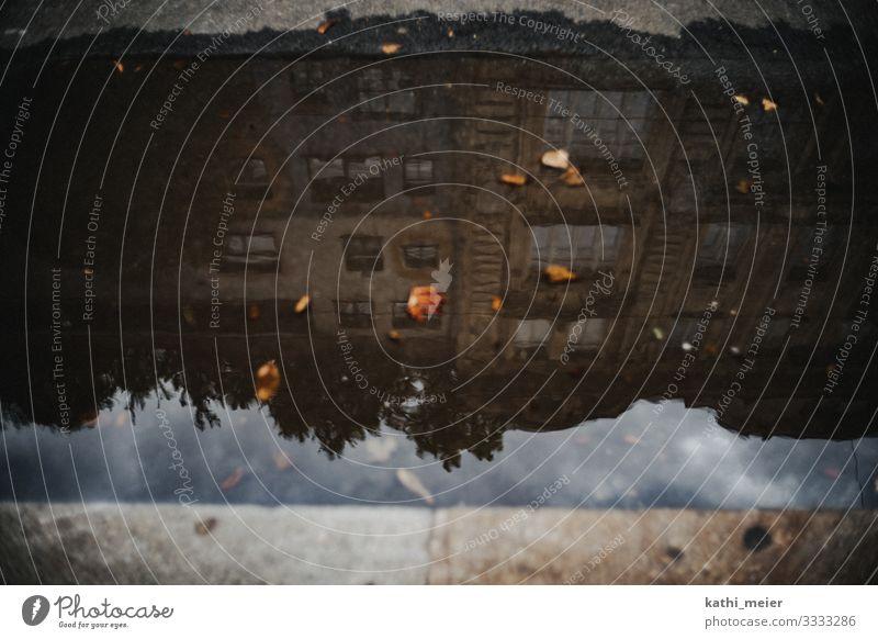Hunderwasserspielgelung Wien dreckig dunkel Pfütze Wasser Bordsteinkante Regen Hundertwasser Sehenswürdigkeit Tourismus Perspektive Spiegelbild