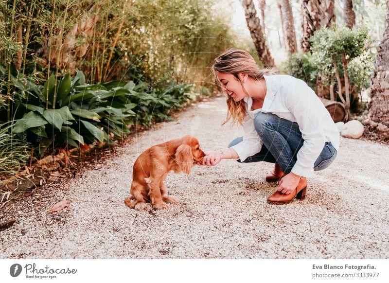 süßer Welpe eines Cockerspaniel-Hundes, der seinem Besitzer in einem Park die Pfote gibt Pfoten high five Frau Haustier Sonnenstrahlen Außenaufnahme Liebe
