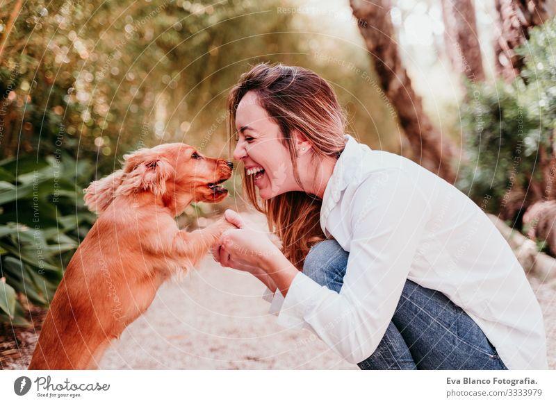 junge Frau und ihr niedlicher Cockerspaniel-Welpe im Freien in einem Park Hund Haustier Sonnenstrahlen Außenaufnahme Liebe Umarmen Lächeln Küssen züchten