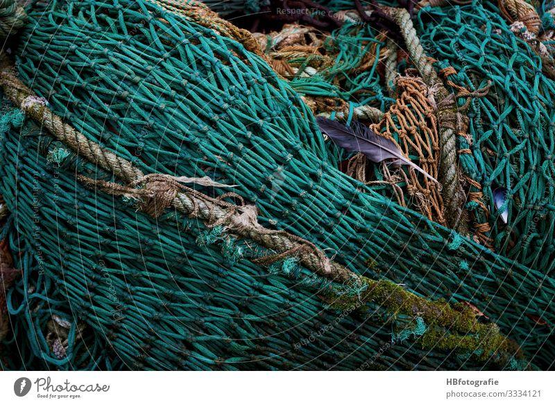 Netz fangen grün Fischernetz Feder Fischereiwirtschaft Farbfoto Außenaufnahme abstrakt Muster Strukturen & Formen