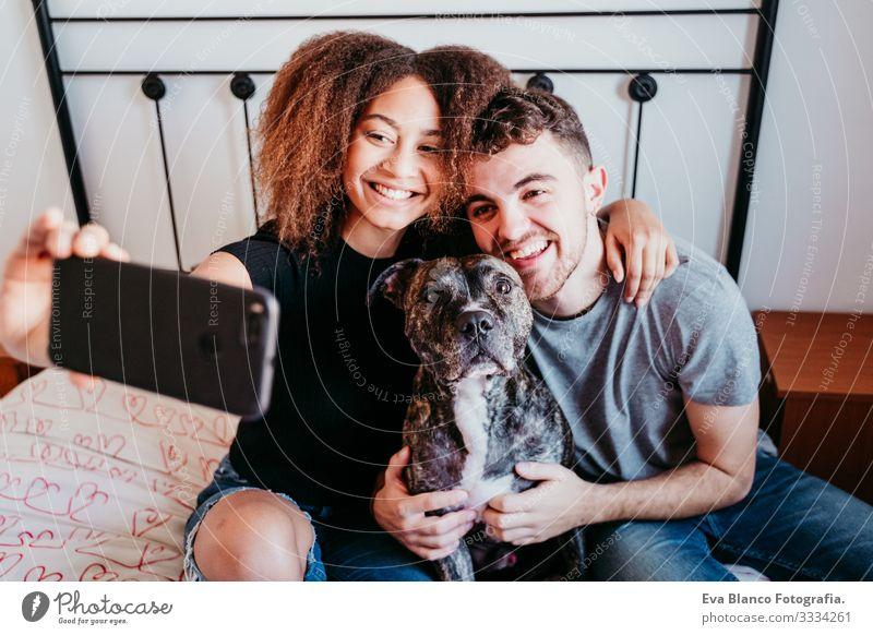 glückliches, verliebtes Paar zu Hause. Afroamerikanische Frau, kaukasischer Mann und ihr Pitbull-Hund zusammen. Familienkonzept Liebe Afroamerikaner urwüchsig
