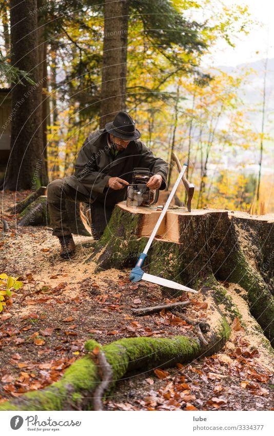 Waldarbeiter 3 Arbeit & Erwerbstätigkeit Beruf Landwirtschaft Forstwirtschaft Umwelt Natur Landschaft Holz Holzfäller Baum Baum fällen Förster Waldaufseher
