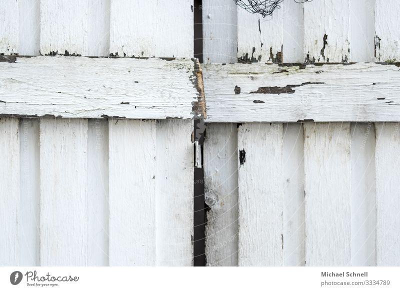 Holztür Hütte Tür alt authentisch weiß Neugier Interesse Holztor Eingang Außenaufnahme Menschenleer Textfreiraum unten