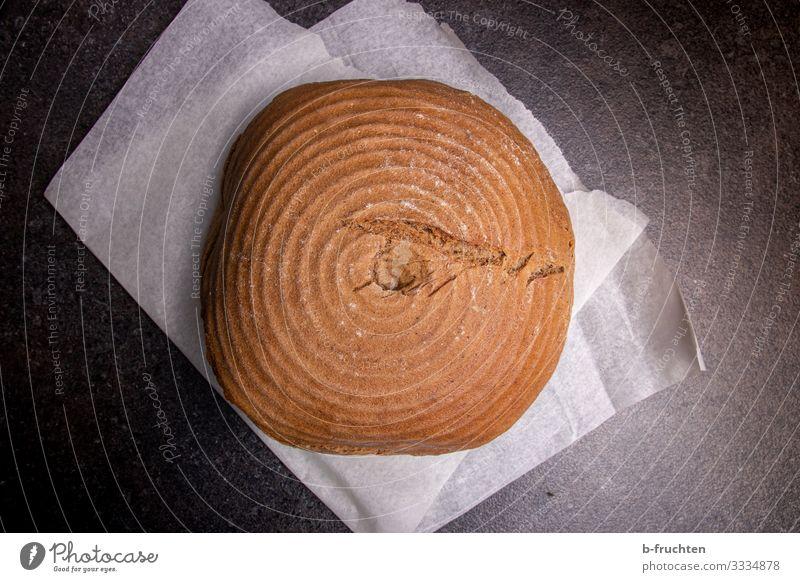 Holzofenbrot Lebensmittel Getreide Brot Ernährung Bioprodukte Gesunde Ernährung Arbeitsplatz Küche Essen genießen frisch Gesundheit brotlaib rund Bäckerei