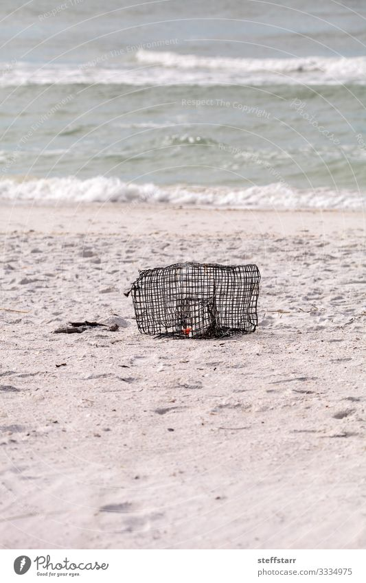 Krabben- und Hummerfalle am weißen Sandstrand angespült Meeresfrüchte Strand Umwelt Natur Küste Metall Wasser blau Schrottfalle Fischen Metallkäfig weißer Sand