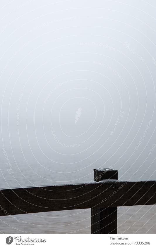 Nebelsee Ferien & Urlaub & Reisen Umwelt Natur Urelemente Wasser Himmel Winter schlechtes Wetter See Mummelsee Geländer Holz dunkel einfach kalt blau schwarz