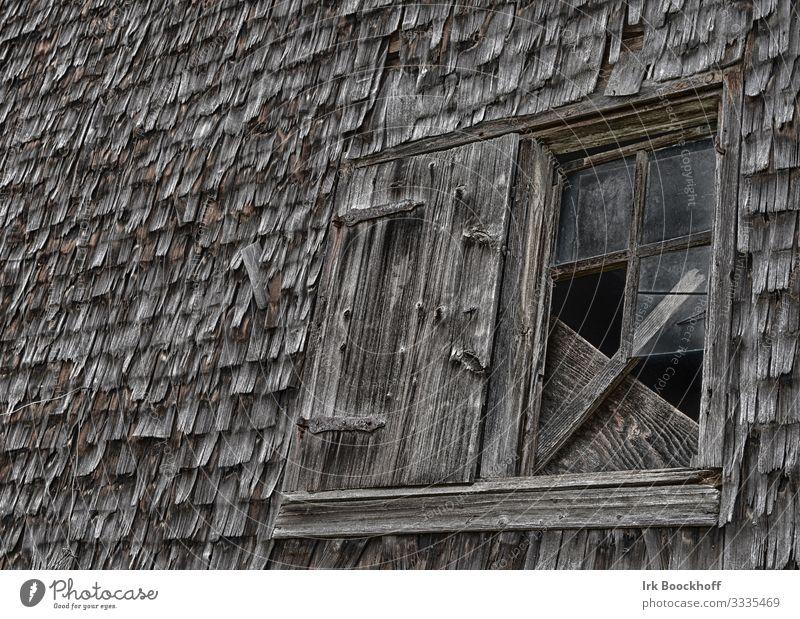altes kaputtes Holzfenster in einem Schuppen Ruine Mauer Wand Fassade Fenster Glas dunkel gruselig braun Angst Endzeitstimmung Verfall Vergänglichkeit