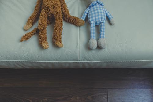 verschiedenfarbige Teddys, die auf dem Sofa die Hände schütteln Lifestyle Freude Haut Wohnung Wohnzimmer Freundschaft Hand Wärme Spielzeug Teddybär Stofftiere