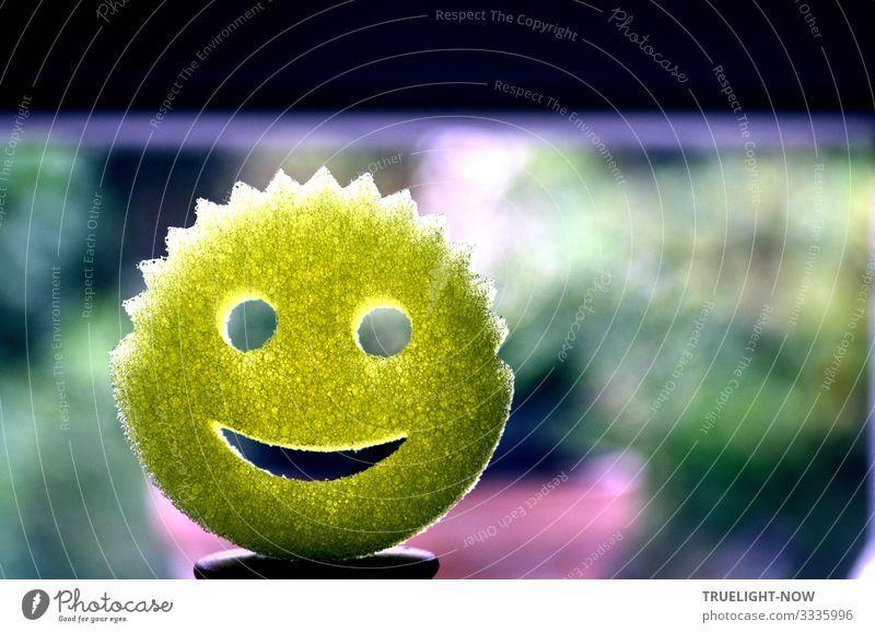 Dankbarkeit, Freude, Motivation Lachen Smiley-Gesicht fröhlich positive Emotion Emoticon-Gesicht Sonne sonnig strahlen Augen Mund leuchten gelb