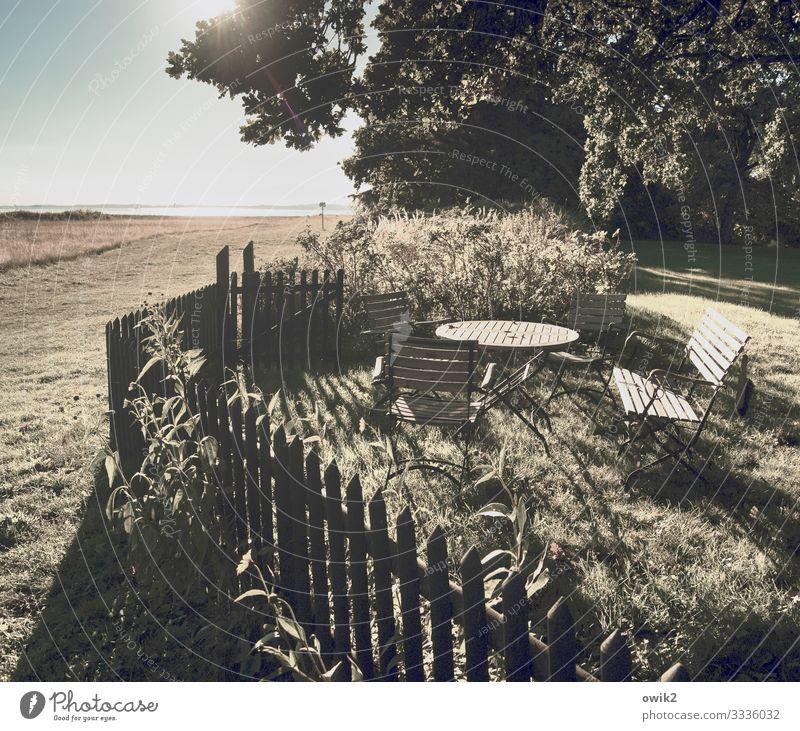 Ummanz Umwelt Natur Landschaft Pflanze Wasser Wolkenloser Himmel Horizont Schönes Wetter Baum Gras Sträucher Garten Wiese Küste Ostsee Insel Rügen Zaun