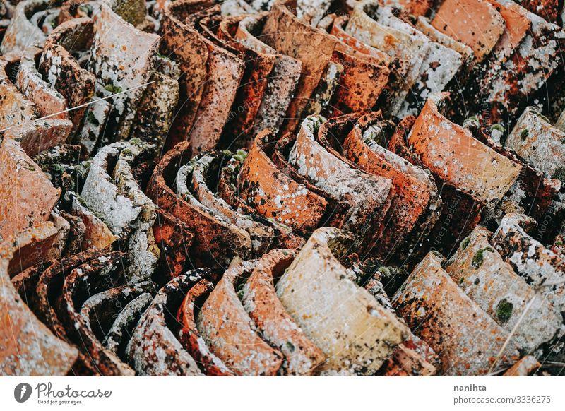 Alte und verschmutzte Moosdachziegel Tapete Natur Rost alt dreckig nass natürlich Zerstörung Fliesen u. Kacheln Dach Dachziegel Konsistenz Verlassen