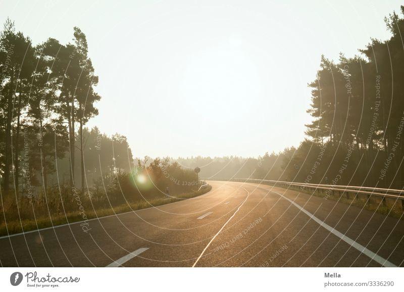Long way home - Leere Straße Straßenverkehr Autobahn Autobahnauffahrt Verkehr leer Menschenleer Sonnenaufgang Sonnenlicht Gegenlicht Kurve Infrastruktur