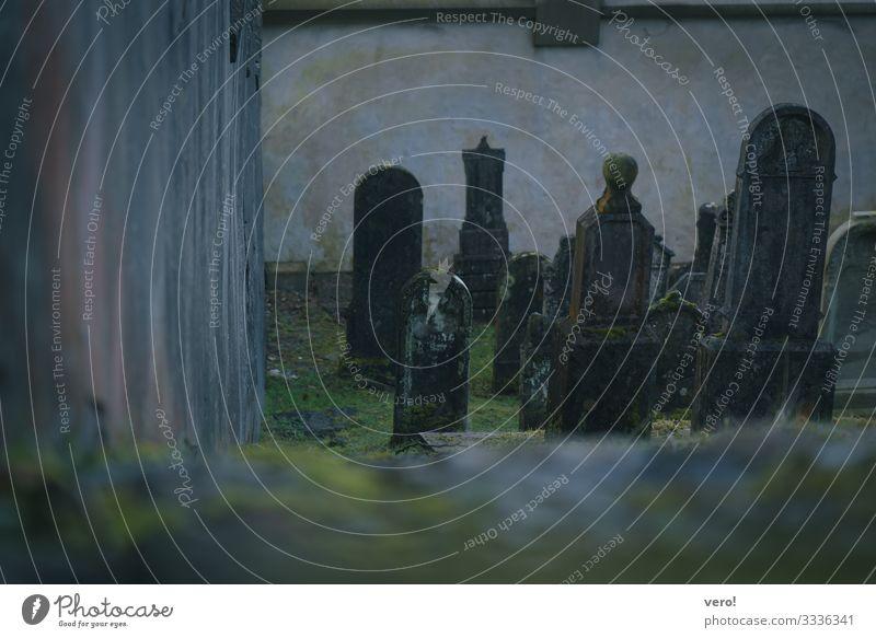 Friedhof alt grün ruhig dunkel Religion & Glaube Wand kalt Traurigkeit Gefühle Mauer Tod grau authentisch Vergänglichkeit einfach rund