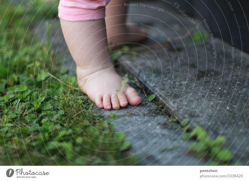 Babyfüße auf Pflastersteinen und Gras Kind Kleinkind Mädchen Junge Fuß 1 Mensch 0-12 Monate 1-3 Jahre gehen stehen Terrasse Wiese Natur Neugier Stolz lernen
