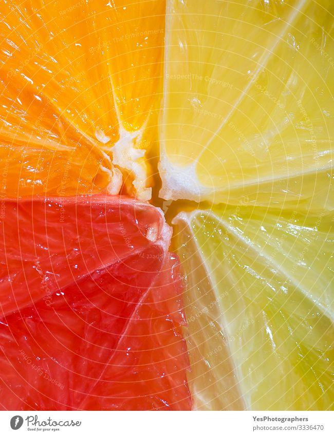 Zitrusfrüchte-Sektionsmischung. Einzelheiten zu den Sommerfrüchten. Frucht Orange frisch mehrfarbig obere Ansicht heiter Zitrusfrüchte-Mischung farbenfroh