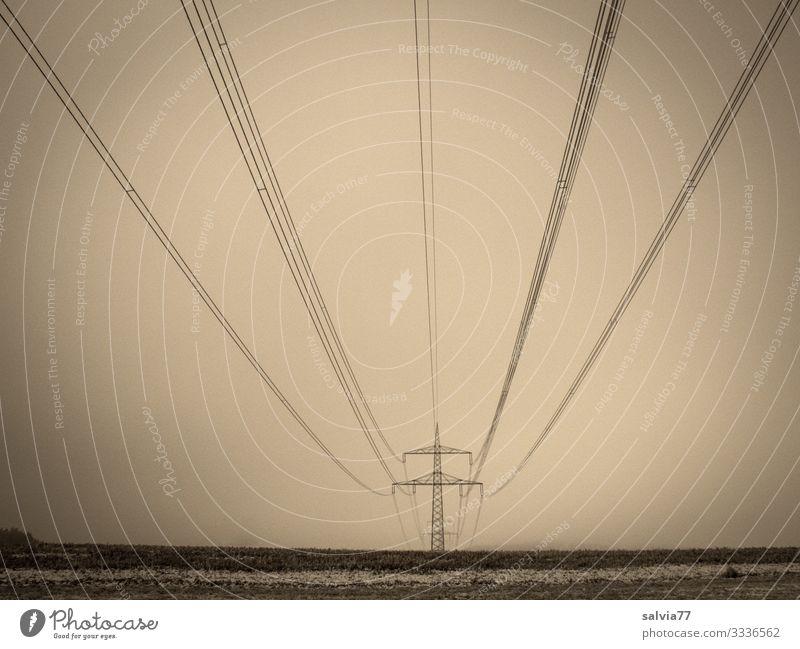 Symmetrie | Hochspannungsleitung Sromnetz Energie Strom Spannung Volt Elektrizität Strommast Technik & Technologie Leitung Energiewirtschaft Menschenleer Umwelt