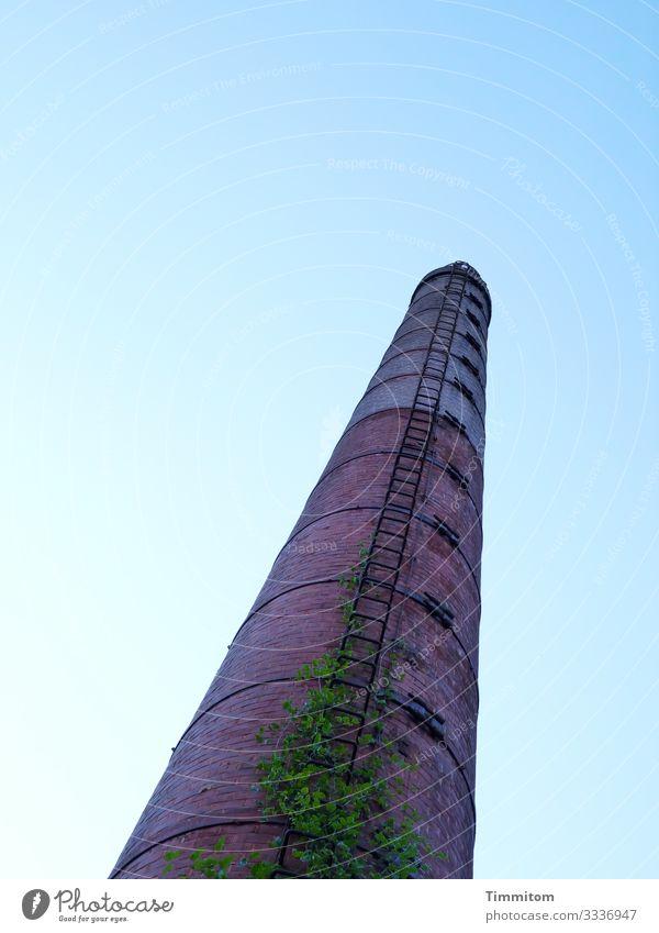 Ein Turm (Multi-Mix) Industrieanlage Stein Metall alt verrückt blau grün violett Gefühle Leiter hoch Farbfoto Außenaufnahme Tag Froschperspektive