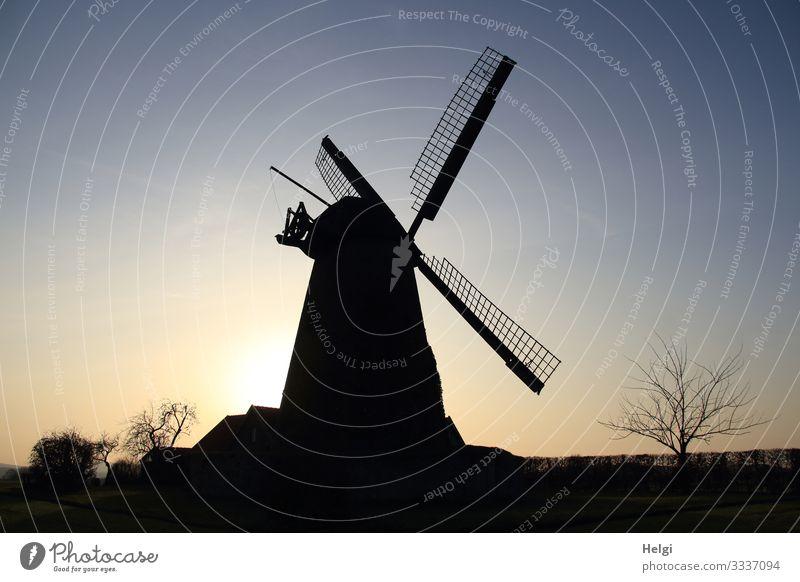 Silhouette eine Windmühle im Abendlicht Umwelt Natur Landschaft Pflanze Himmel Winter Schönes Wetter Baum Dorf Bauwerk Gebäude leuchten stehen alt ästhetisch