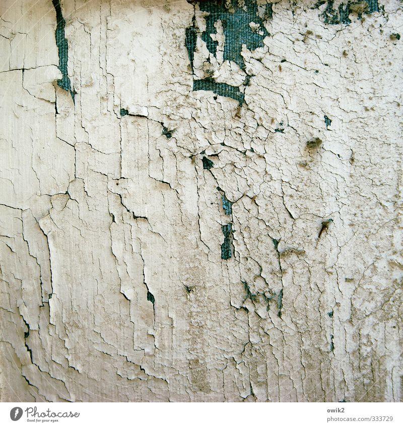 Sturmfrei Holz alt trashig Farbstoff Riss Farbrest Zahn der Zeit Textfreiraum Farbfoto Gedeckte Farben Außenaufnahme abstrakt Muster Strukturen & Formen
