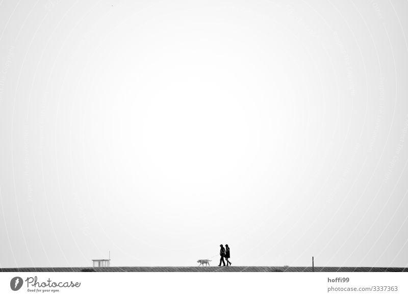 mal eben mit dem Hund Mensch 2 Himmel Wolkenloser Himmel Herbst Winter schlechtes Wetter Nebel Regen Küste Nordsee Deich 1 Tier Bewegung gehen Partnerschaft