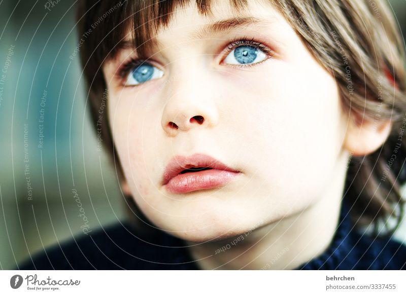 in träumen versinken Kind Junge Familie & Verwandtschaft Kindheit Haut Kopf Haare & Frisuren Gesicht Auge Nase Mund Lippen 3-8 Jahre schön blau Warmherzigkeit