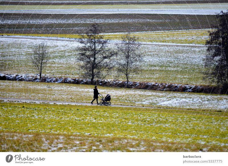 Spaziergang mit Kinderwagen Baby Frau Erwachsene Mutter Landschaft Winter Eis Frost Schnee Baum Wiese Feld Bach Wege & Pfade Mantel Mütze laufen kalt