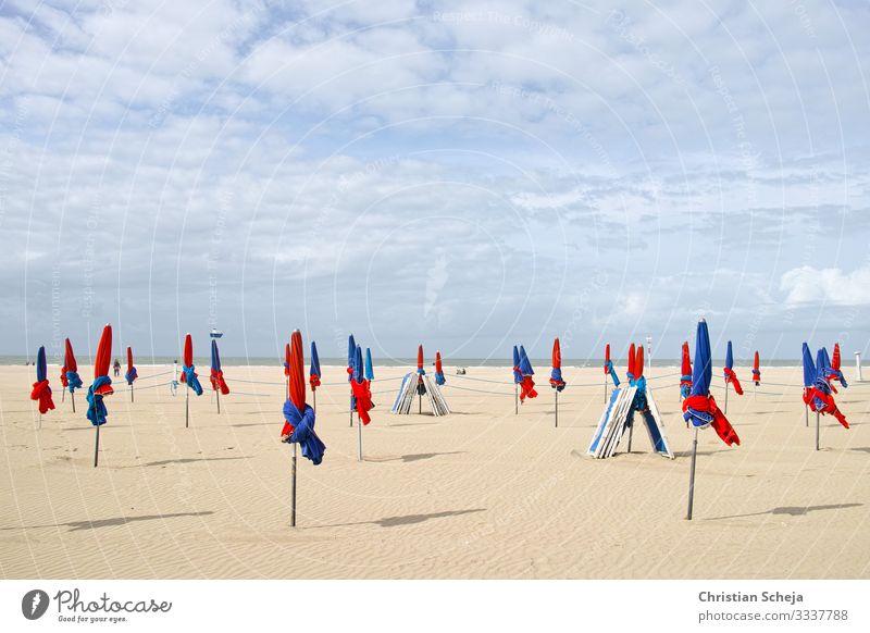 Red and Blue Erholung Ferien & Urlaub & Reisen Tourismus Sommer Sommerurlaub Sonne Sonnenbad Strand Meer Sonnenschirm Schönes Wetter Küste Normandie Deauville