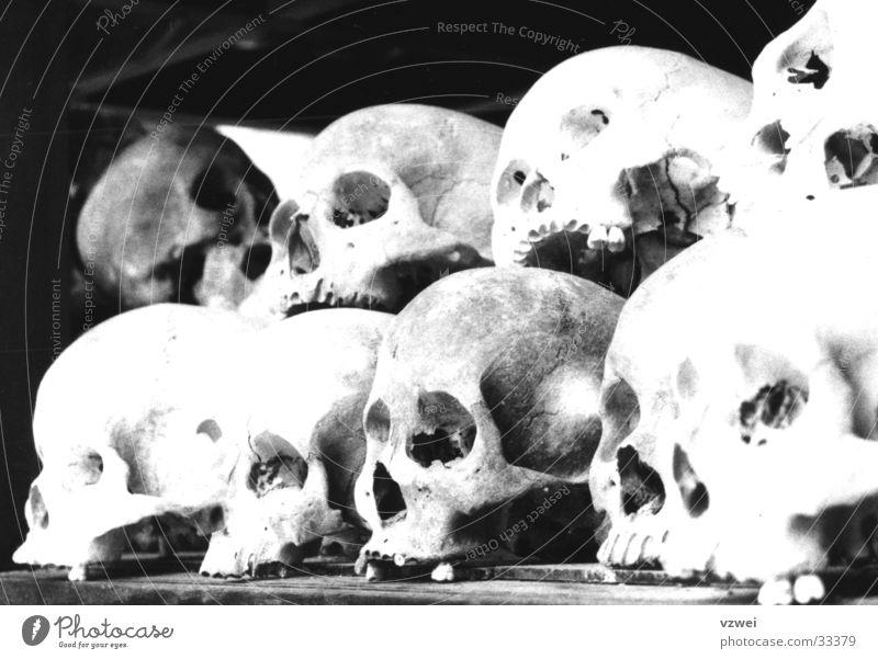 Mahnmal der Unmenschlichkeit Tod Denkmal historisch Mord Schädel Terror Massenmord Biest unmenschlich