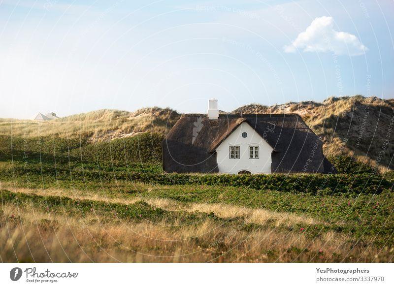 Schilfdachhaus auf Dünen auf der Insel Sylt an der Nordsee Sommer Haus Traumhaus Landschaft Schönes Wetter Gebäude Architektur Fassade träumen historisch Idylle
