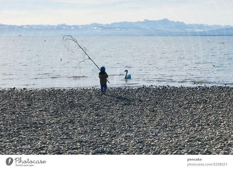 wählt eure waffen! Kleinkind Natur Landschaft Urelemente Wasser Himmel Horizont Baum Alpen Küste Seeufer Strand Wildtier Vogel Schwan 1 Tier Ehre Tapferkeit