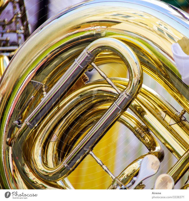 mal tief Luft holen Musik Orchester Horn Blasinstrumente Blechblasinstrumente Blaskapelle gelb gold blasen musizieren Krach laut marschieren Parade Rhythmus